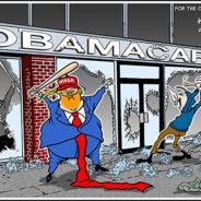 Anti Obamacare